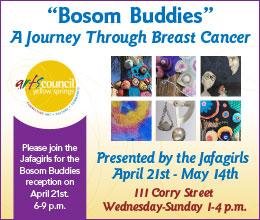 Bosom Buddies - A Journey Through Breast Cancer